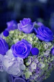 wedding flowers royal blue 96 silk open royal blue efavormart