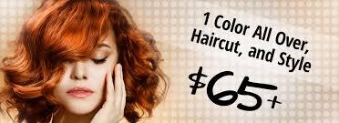 Best 25 Salon Promotions Ideas Hair Color Specials Best Hair Color 2017