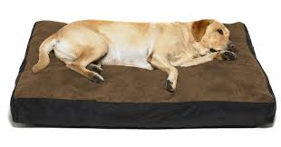 Burrowing Dog Bed How To Clean A Large Dog Bed Washabledogbed Net