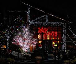 when do the zoo lights start akron zoo wild lights event join us this holiday season