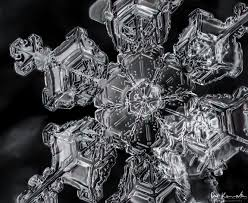 snowflake wilson bentley macro snowflakes atmospheric noise snow flake pinterest