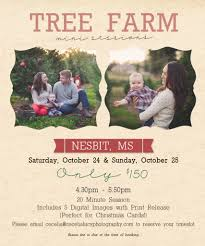 christmas tree farm mini sessions cecelia lucy photography