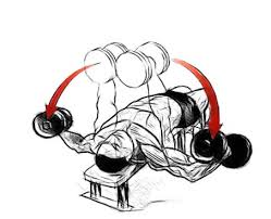 Flat Bench Dumbell Incline Decline Flat Dumbbell Fly For Chest Muscles Gofitandhealthy