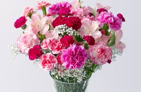mothers day flower here are some great mother s day flowers offers metro news