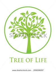 stylised tree icon symbol concept illustration stock vector