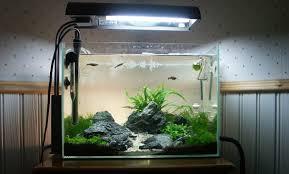 Aquascape Lighting How To Set Up Simple Aquascape With Iwagumi Style Aquascaper