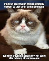 Best Grumpy Cat Memes - pin by rita tincher on grumpy cat pinterest grumpy cat humor