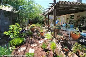 succulents and more linda u0027s sacramento backyard succulent garden