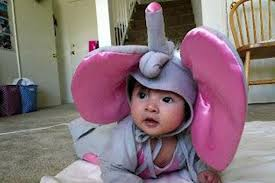 Infant Elephant Halloween Costumes 18 Inappropriate Halloween Costumes Kids Lifedaily