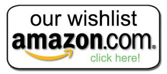wish list wishlist lutheran settlement house empowering children