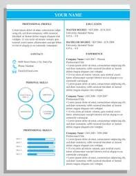 sophisticated resume design for microsoft word template by