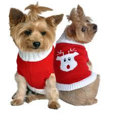 sweaters baxterboo