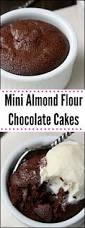 best 25 diabetic chocolate cake ideas on pinterest sugar free