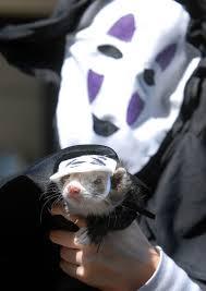 scariest costumes dailycamera photo keywords ferret costumes