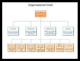 template organizational chart sle organizational charts our organizational chart software