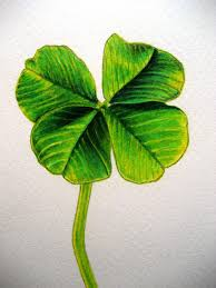 4 leaf clover drawing drawing art ideas