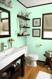 Brown Bathroom Cabinets by Best 20 Mint Bathroom Ideas On Pinterest Bathroom Color Schemes