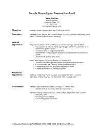 Non Profit Resumes How Resume Should Look Free Resume Example And Writing Download