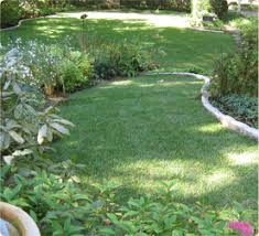 Landscaping Companies In Ct by Best Landscaping And Snow Removal Business West Hartford Avon