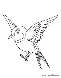 flying bird coloring pages hellokids