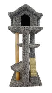 Curved Cat Scratcher 1416 Best Cat Beds And Furniture Images On Pinterest Image Cat