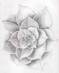 a rose sketch in pencil drawing flowers how to draw a rose with
