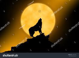 wolf howling moon midnigt stock illustration 514511551 shutterstock