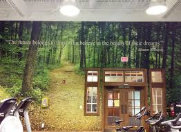 nature murals for walls home design amazing nature murals for walls photo