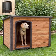 Simple Small Adorable Nice Wonderful Cool Dog House Idea With
