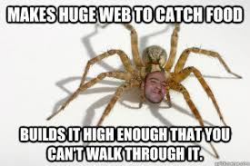 Huge Spider Memes Image Memes - makes huge web to catch food builds it high enough that you can t