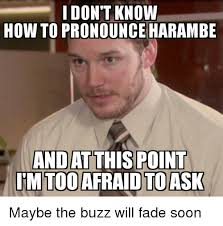 How Is Meme Pronounced - 25 best memes about how to pronounce memes how to pronounce memes