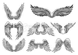 set of 8 wings graphic elements vector illustrations
