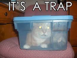 Cat Trap Meme - it s a trap cat meme cat planet cat planet