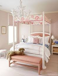 Pink Canopy Bed Canopy Bed With Pink Headboard Transitional S Room