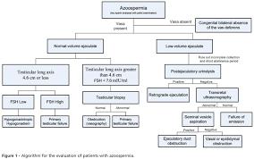 stress pattern sperm adalah the epidemiology and etiology of azoospermia
