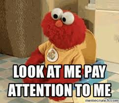Pay Attention To Me Meme - at me pay attention to me