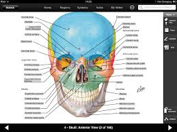 Netter Atlas Of Human Anatomy Pdf Download Netters Atlas Of Human Anatomy Ipad App Is A Powerful Anatomical