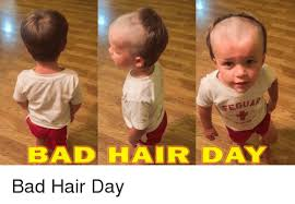 Bad Hair Day Meme - 25 best memes about bad hair day meme bad hair day memes