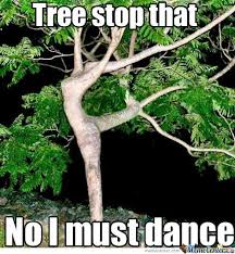 Tree Meme - darn you dancing tree by liamotee11 meme center