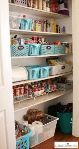 Kitchen Pantry Organization Systems - inspiring walk in pantry designs 17 photo new at best 25 closet