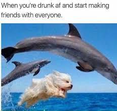 You Re Drunk Meme - dopl3r com memes when youre drunk af and start making friends