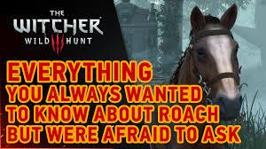 Soon Horse Meme - the witcher 3 wild hunt roach youtube