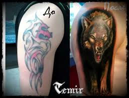 cover up wolf by timhag on deviantart