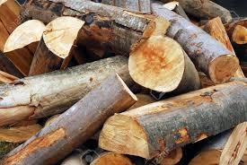 wood log duchy logs