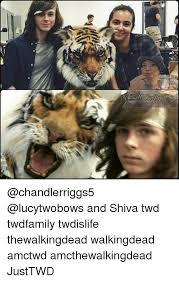 Shiva Meme - piel and shiva twd twdfamily twdislife thewalkingdead walkingdead