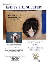 empty the shelter flyer decatur u0026 macon county animal shelter