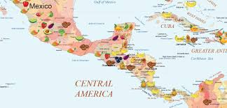 Cabo San Lucas Mexico Map by The Fruit World Map Special Edition U2013 Fruitworldmedia