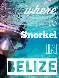 Utah snorkeling images Where to snorkel in san pedro belize an in depth guide jpg