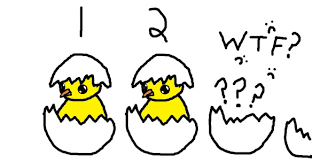 Don Count The Chicken Before They Hatch Don T Count Your Chickens Before They Hatch But At Least Get