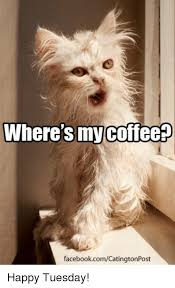 Happy Tuesday Meme - where s coffee facebookcomcatingtonpost happy tuesday meme on